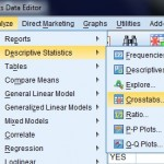 spss tutorial for beginners SPSS  Statistics