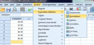 spss mean 2