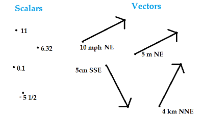 scalar vs vector