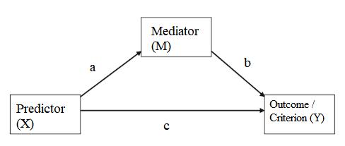 mediator variable